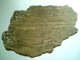 Migmatit